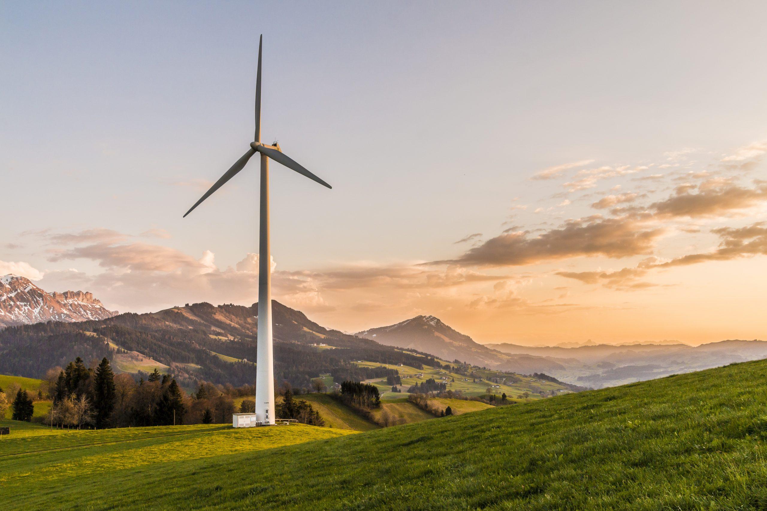 L'énergie verte a augmenté sa puissance de production et son influence sur le marché grâce au coronavirus