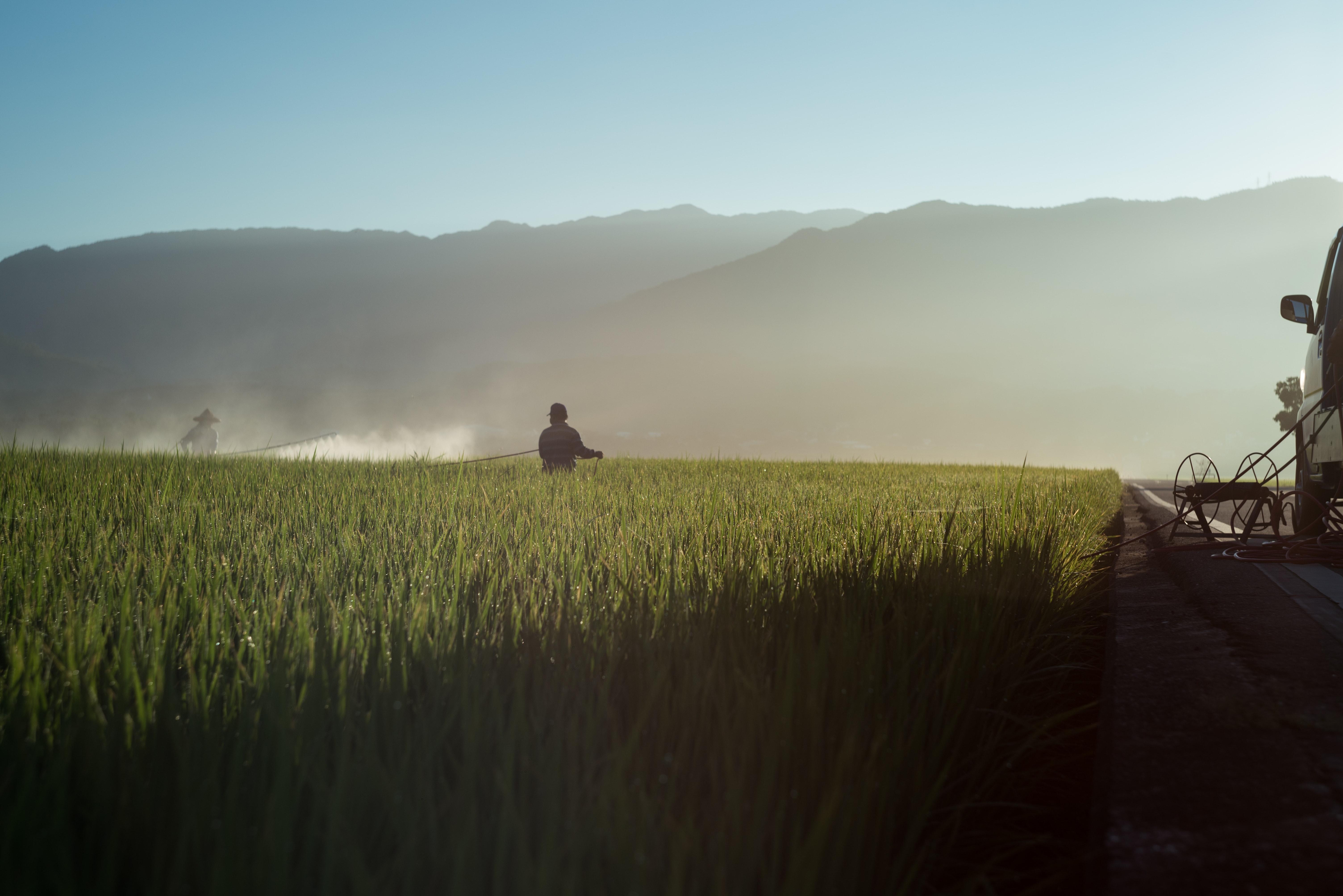 En Inde, des tensions éclatent entre les agriculteurs et le gouvernement