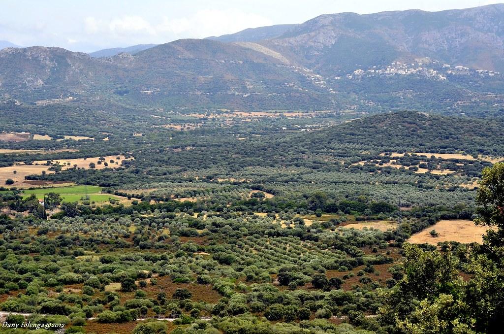 La production artisanale, fer de lance de l'économie Corse